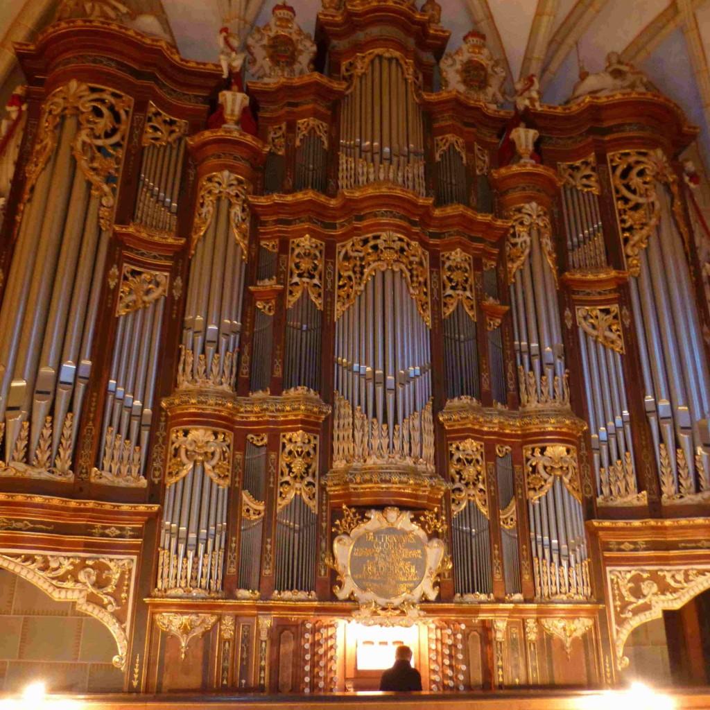 Orgel_Altenburg_Schlosskirche